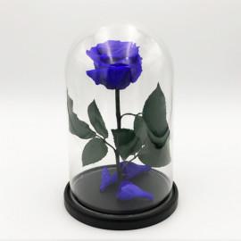 Роза в колбе фиолетовая