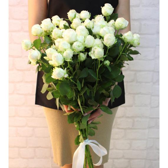 """Кустовая роза """"Бомбастик"""""""