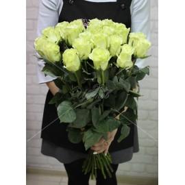 "Роза сорт ""Мондиаль"" (""Mondial"")"