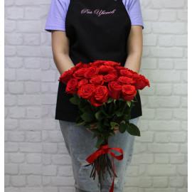 """Роза сорт """"Нина"""" (""""Nina"""")"""