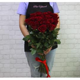 """Роза сорт """"Эксплорер"""" (""""Explorer"""") 60см"""